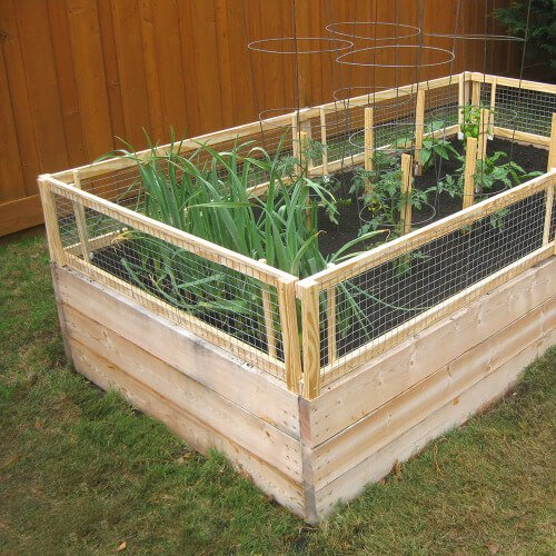 DIY raised bed with removable pest gate
