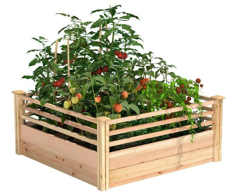 Cedar raised garden bed with corral sides