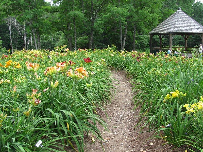 Merryspring Nature Center in Camden, Maine