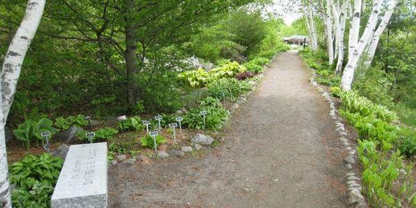 Viles Arboretum - a beautiful public garden in Maine.