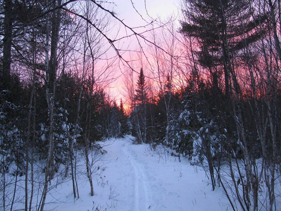Sun setting on a hiking trail in Bangor, Maine in the Walden Parke Preserve.
