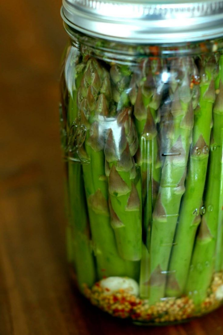 A large jar of probiotic rich fermented asparagus pickles.
