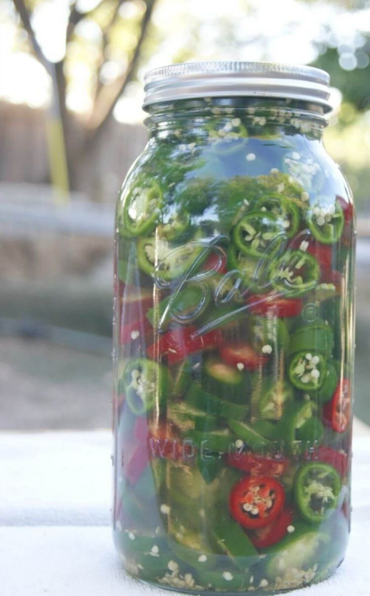 A large jar of spicy lacto-fermented jalapeno peppers.