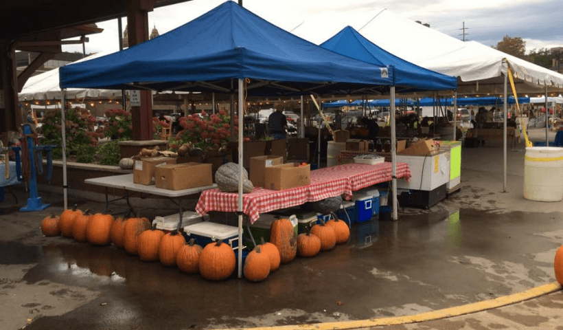 Several tents set up at the Downtown Marquette Farmers Market during a fall day.