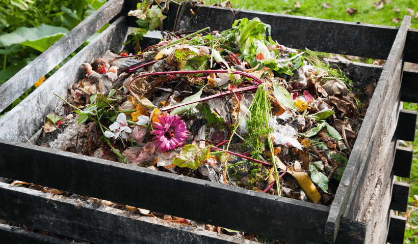 A full compost bin with green food scraps on top.