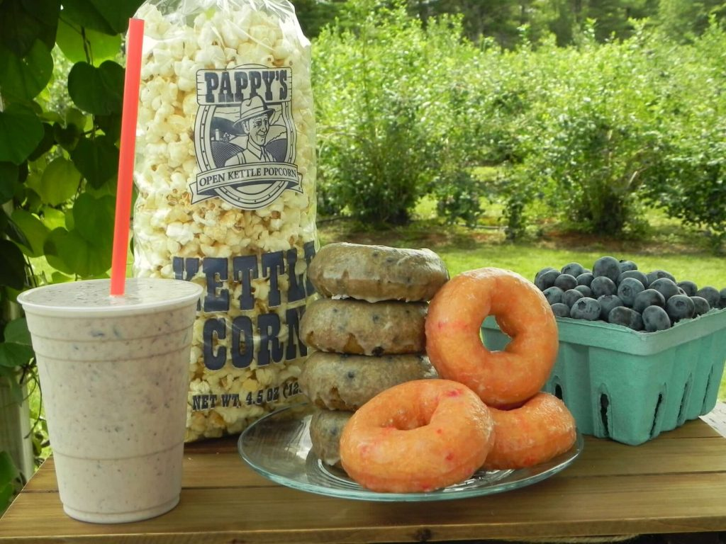 Donuts, blueberries, popcorn, and a smoothie on a picnic table at Libby & Son U Picks Orchard.