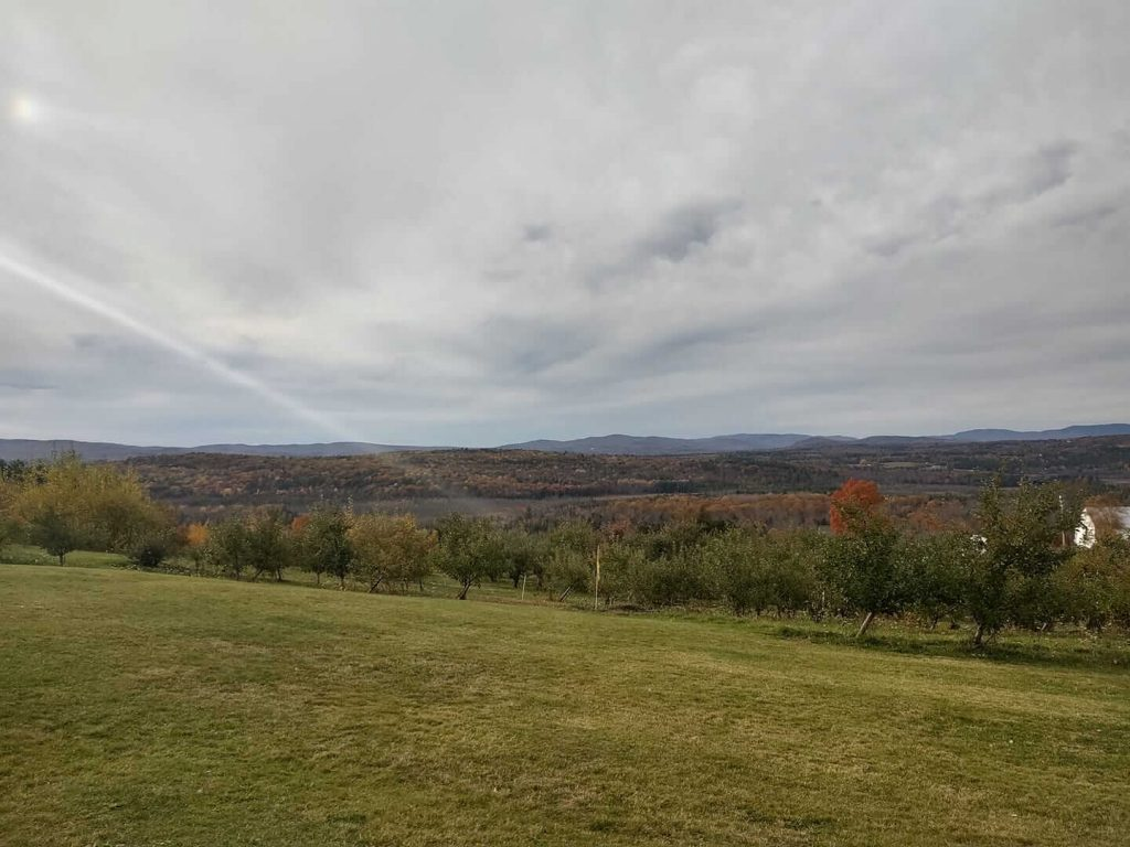 An apple orchard on the top of a hill overlooking a valley with mountains in the distance.